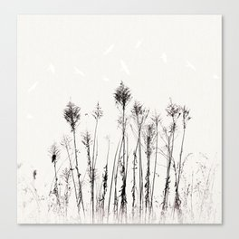 Dried Tall Plants and Flying White Birds Canvas Print