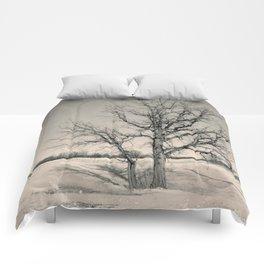 Winter Tree Comforters