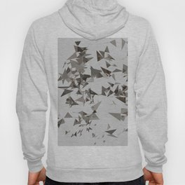 Abstract Composition 386 Hoody