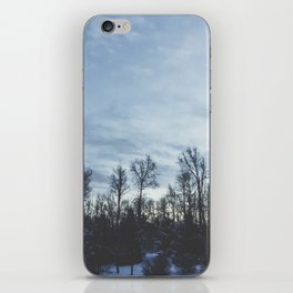 Wintery Hue iPhone Skin