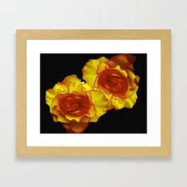 Sunshine Begonias Framed Art Print