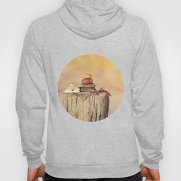 Balanced stone cairn in sunset light Hoody
