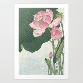 Flowering lotus flowers, Ohara Koson Art Print