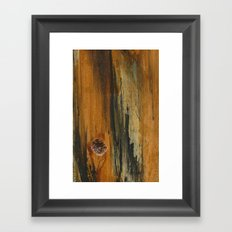 Abstractions Series 001 Framed Art Print