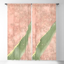 Weathered pink wall and cactus Blackout Curtain