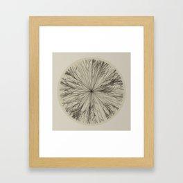 Flake Framed Art Print