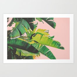 Banana Leaves III (Pink) Art Print