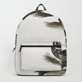 89 The Varied Creeping Warbler (Mniotilta varia) 90 The Brown Creeper (Certhia americana) 91 The Whi Backpack