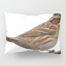 Rustic Bunting Bird Vector Isolated Pillow Sham