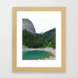 Forest Wonder Framed Art Print
