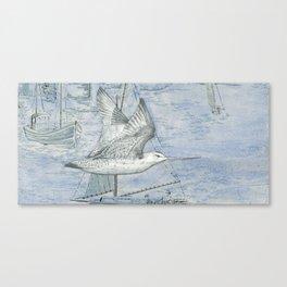 Karoro Canvas Print