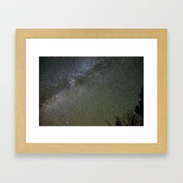Twigs and Ways Framed Art Print