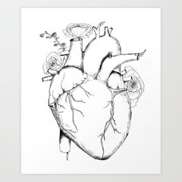 Black and White Anatomical Heart Art Print