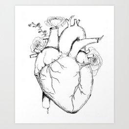 Black and White Anatomical Heart Art Print