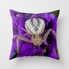 White Crab Spider on Purple Flower. Throw Pillow