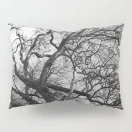Old oak tree. Moscow district. Pillow Sham