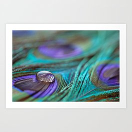 Jewel on Feathers Art Print