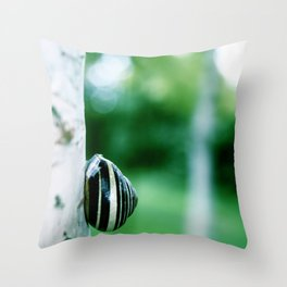 Snail on Silver Birch Throw Pillow