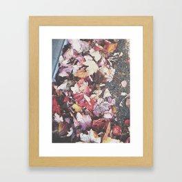 Autumn 13 Framed Art Print