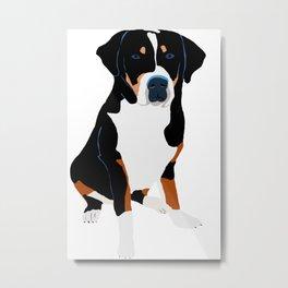 Swiss Mountain Dog Art Metal Print