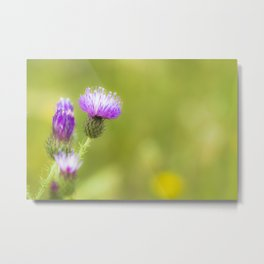 natural purple Metal Print