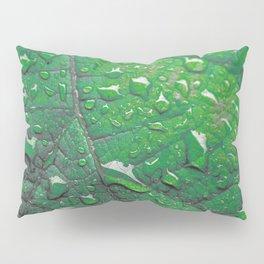 #183 Pillow Sham