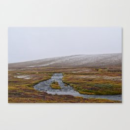 Light Snow on the Tundra Canvas Print