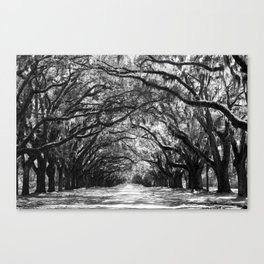 Sunny Southern Day - Black and White Canvas Print