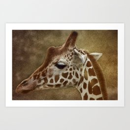 Its all in a Glance Art Print