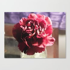 A Glimpse Of Romance Canvas Print