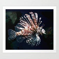 Tiger Fish Art Print