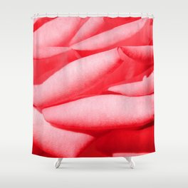 #33 Shower Curtain