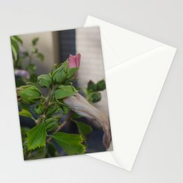 Cross Bow Stationery Cards