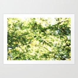 Bright Day-green leaves Art Print
