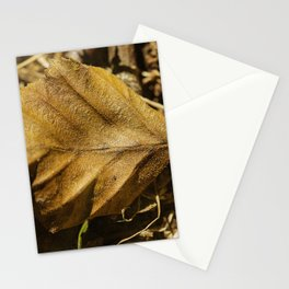 In the forest #10 Stationery Cards