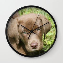 Chocolate Lovers' Lab Wall Clock