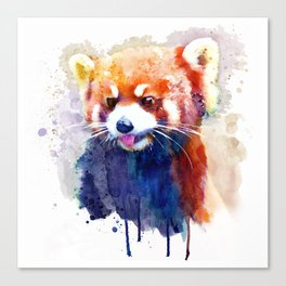 Red Panda Portrait Canvas Print