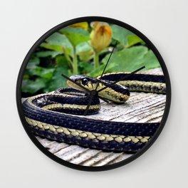 Garter Snake, High Park Gardens Wall Clock