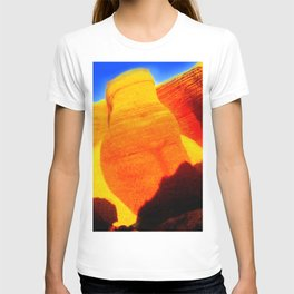 Torso of the woman / Earth mother T-shirt