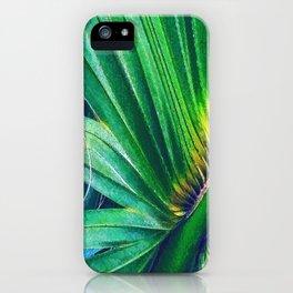 Palm Leaf blaze iPhone Case