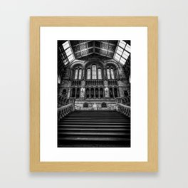 History Museum London Framed Art Print