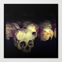 Killing fields Canvas Print
