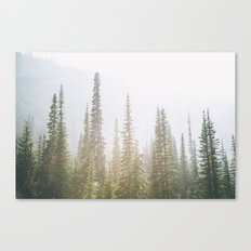 Forest XXVII Canvas Print