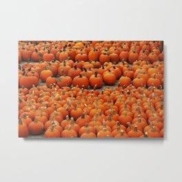 Plenty of pumpkins at Peck's Produce Farm Market! Metal Print