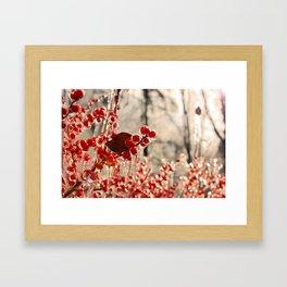 Frozen Framed Art Print