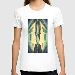 Funny Money I T-shirt