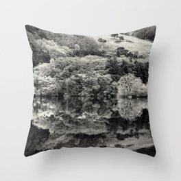 Finding bliss Throw Pillow