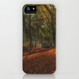 Through Ten Acre Wood iPhone Case