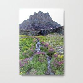 Mountain Wildflowers Lined Stream Metal Print