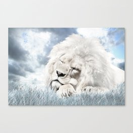 Barbary Lion Canvas Print